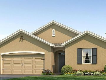 10037 WARM STONE STREET, Thonotosassa, FL, 33592,