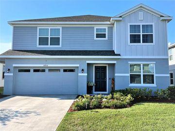 30935 PARROT REEF COURT, Wesley Chapel, FL, 33545,