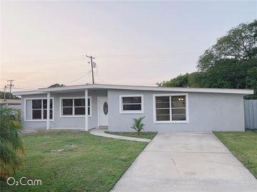 4413 W JEAN STREET, Tampa, FL, 33614,