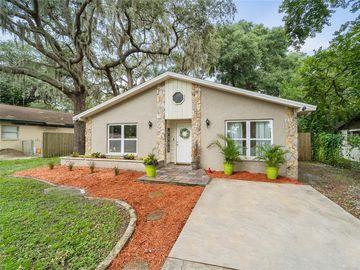 919 ALICIA AVENUE, Tampa, FL, 33604,