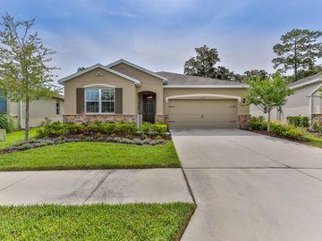 17727 GARSALASO CIRCLE, Brooksville, FL, 34604,