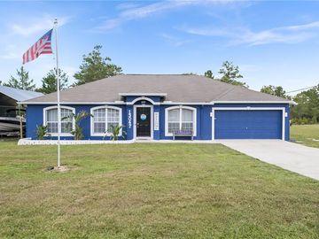 13047 MEINERT AVENUE, Brooksville, FL, 34613,