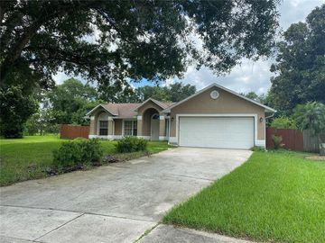 4130 EAGLE FEATHER DRIVE, Orlando, FL, 32829,