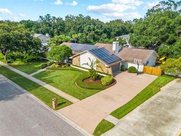 6325 JACQUELINE ARBOR DRIVE, Temple Terrace, FL, 33617,