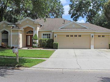 12537 RIVER BIRCH DRIVE, Riverview, FL, 33569,