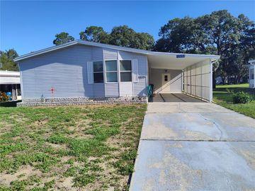 12094 WALSHWOOD AVENUE, Brooksville, FL, 34613,