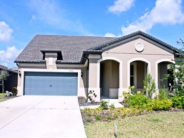8356 OLIVE BROOK DRIVE, Wesley Chapel, FL, 33545,