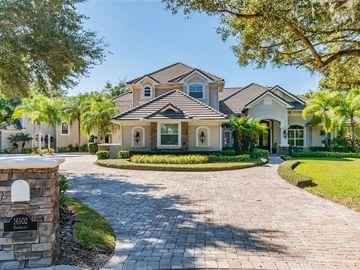 16102 SONSOLES DE AVILA, Tampa, FL, 33613,