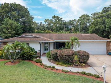 1679 WILDWOOD ROAD, Clearwater, FL, 33756,
