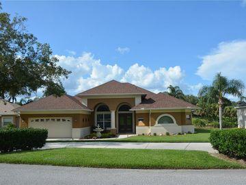 10648 VISTA DEL SOL CIRCLE CIRCLE, Clermont, FL, 34711,
