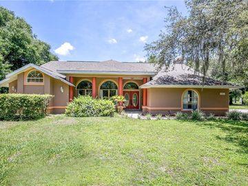 15241 WILLOW LANE, Tavares, FL, 32778,