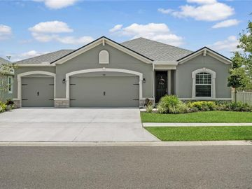909 LEE SHORE STREET, Valrico, FL, 33594,