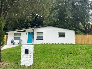 313 LIME TREE ROAD, Tampa, FL, 33619,