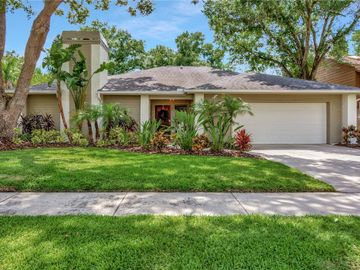 12104 CYPRESS HOLLOW PLACE, Tampa, FL, 33624,