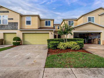 1009 CHALCEDONY STREET, Kissimmee, FL, 34744,