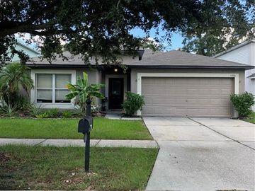 13516 COPPER HEAD DRIVE, Riverview, FL, 33569,