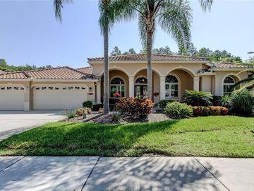 1257 KINGS WAY LANE, Tarpon Springs, FL, 34688,