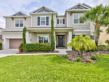 950 HERITAGE GROVES DRIVE, Brandon, FL, 33510,