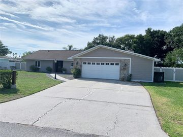 3357 GROVE PLACE, Land O Lakes, FL, 34639,