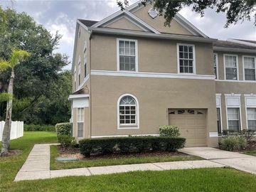 10121 FARMINGDALE PLACE, Tampa, FL, 33624,