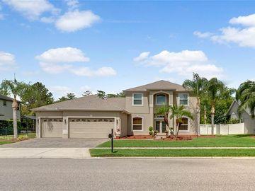 1332 RICHMOND GRAND AVENUE, Orlando, FL, 32820,