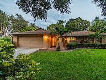 811 VILLAGE WAY, Palm Harbor, FL, 34683,