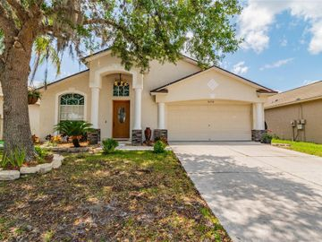 30746 BIRDHOUSE DRIVE, Wesley Chapel, FL, 33545,