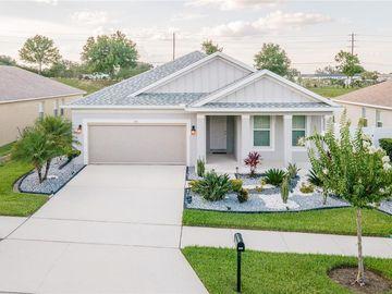 161 COMPASS ROSE DRIVE, Groveland, FL, 34736,
