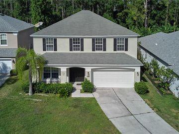 12321 CAPE SOUND COVE, Orlando, FL, 32825,