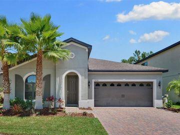 15236 ANGUILLA ISLE AVENUE, Tampa, FL, 33647,
