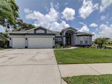 3476 LITTLELEAF COURT, Spring Hill, FL, 34609,