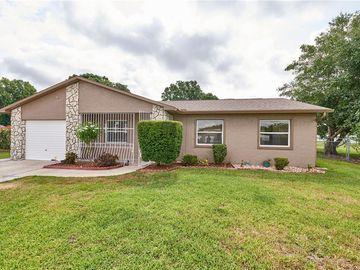 1237 TWIN CONE COURT, Orlando, FL, 32822,