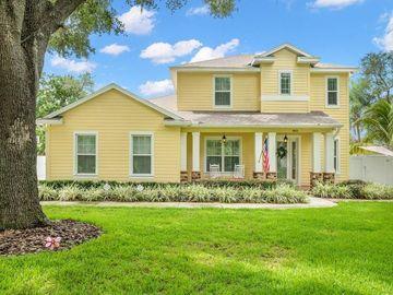 403 BELLE VIEW AVENUE, Temple Terrace, FL, 33617,