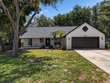 18118 CHURCH STREET, Groveland, FL, 34736,