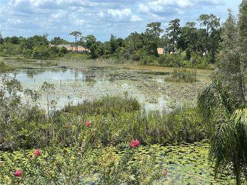 21133 LOS CABOS COURT, Land O Lakes, FL, 34637,