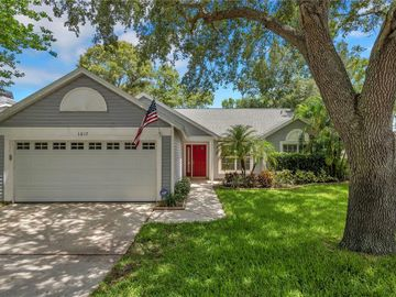 1017 ROLLING OAKS AVENUE, Tarpon Springs, FL, 34689,