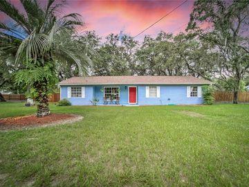 8411 ALAFIA RIDGE ROAD, Riverview, FL, 33569,
