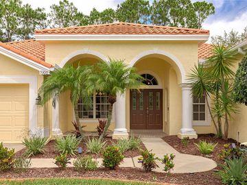 5300 KARLSBURG PLACE, Palm Harbor, FL, 34685,