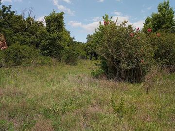 None REDWING, Groveland, FL, 34736,