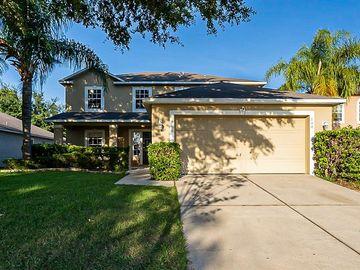 104 CABRILLO DRIVE, Groveland, FL, 34736,