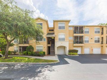 5125 PALM SPRINGS BOULEVARD #4201, Tampa, FL, 33647,