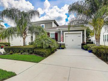 3546 WICKET FIELD ROAD, Lutz, FL, 33548,