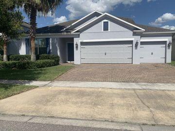 1425 PINE MARSH LOOP, Saint Cloud, FL, 34771,