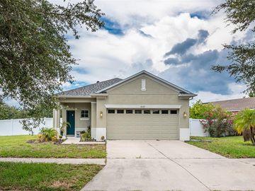 8233 SUMMER WOOD LANE, Riverview, FL, 33578,