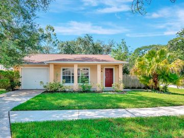 1120 WILLOW PINES COURT E, Tampa, FL, 33604,