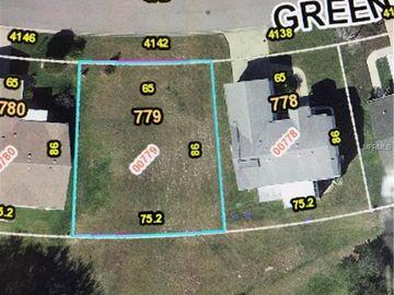 4142 GREENBLUFF COURT #779, Zellwood, FL, 32798,