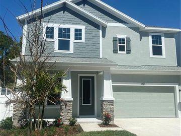 3715 W LEONA STREET, Tampa, FL, 33629,