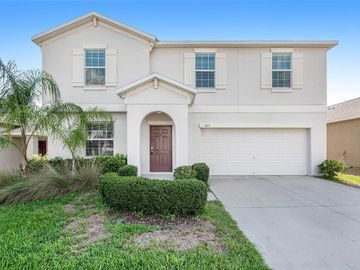 205 ENGLISH HERITAGE PLACE, Dover, FL, 33527,