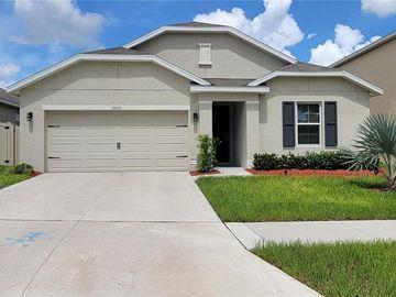10010 WARM STONE STREET, Thonotosassa, FL, 33592,