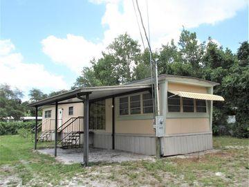 42312 MAGGIE JONES ROAD, Paisley, FL, 32767,